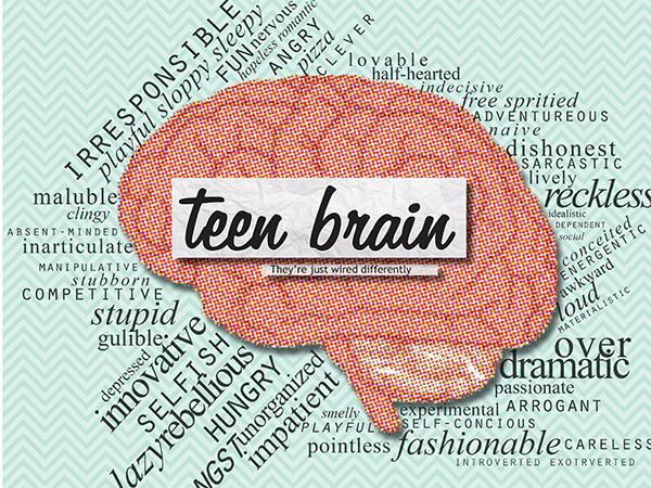 "opinion on teenage brain Alcohol can rewire the teenage brain  but there are good reasons why it makes sense to hold off drinking alcohol ""until the teenage years are over,"" she says."