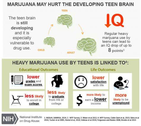 marijuanainfo02b_1