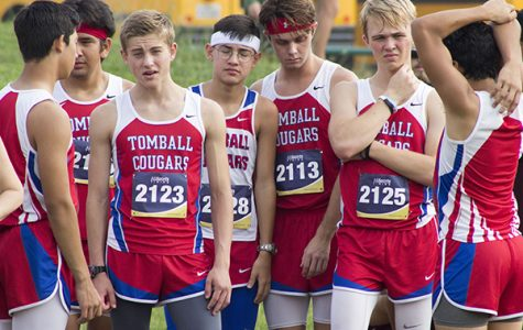 Cross Country runs to district win