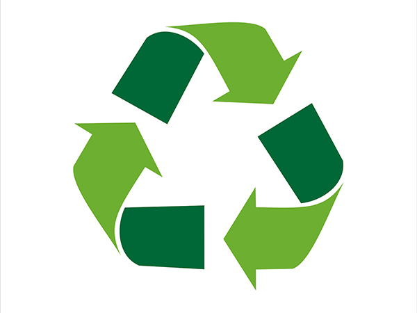 Recycling Club hopes to raise awareness on recycling efforts
