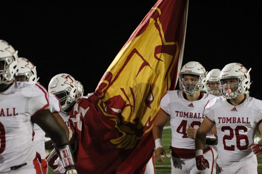 Football+team+holding+cougar+flag.