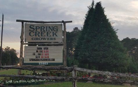 Spring Creek Growers looking for seasonal help