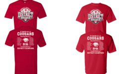 Customized shirts can be ordered today for the district champ baseball team.